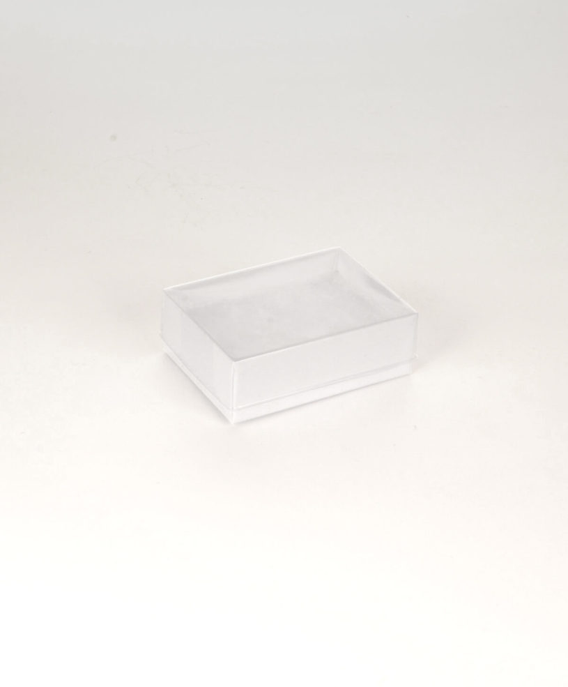 BX6T-WHITE-CLEAR-LID-JEWELLERY-BOX