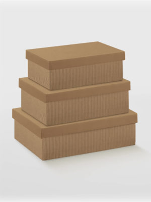 BXF35151-2PC-BOX-WITH-LID-CORRU-KRAFT