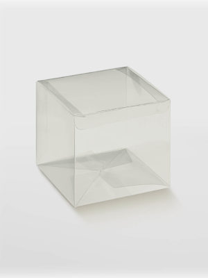 BXF94024-TRANSPARENT-BOX