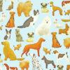 KR17550118A-BLUE-DOGS-PAPER